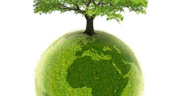 whysoft group démarche environnementale